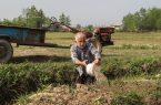 تنش آبی در تالش، توپ در زمین دولت | کشاورزان منتظر آب ومسئولان دنبال مقصر هستند