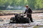 کشاورزان تقویم زراعی را رعایت کنند / کاهش ۳۰ درصدی بارش ها درنیمه اول سال آبی