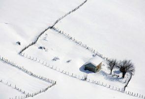 زمستان زیبای جنگلهای تالش به روایت تصویر خبرگزاری روسی