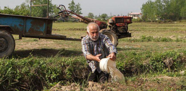 تنش آبی در تالش، توپ در زمین دولت   کشاورزان منتظر آب ومسئولان دنبال مقصر هستند